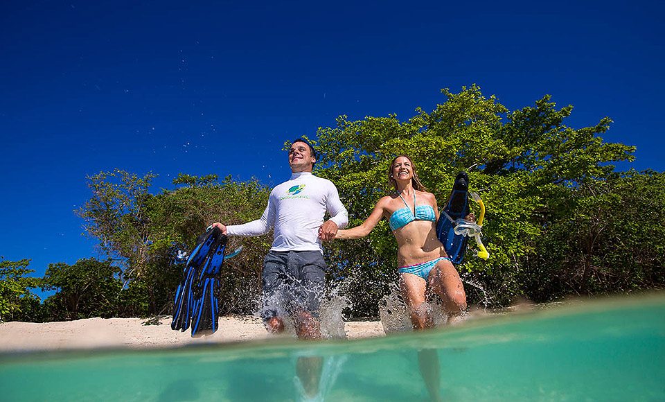 Cairns Reef Rainforest Accommdated Tours