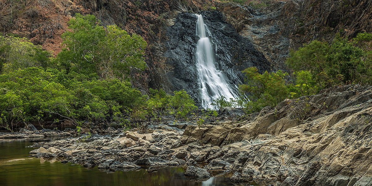 Cairns Cooktown Daintree Rainforest Tour