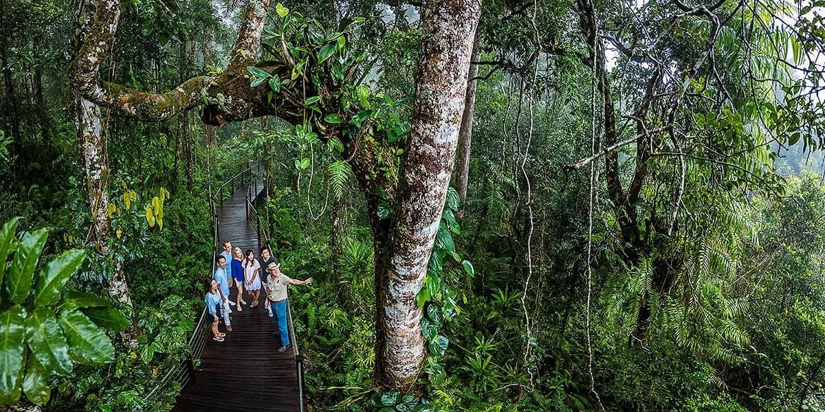 Cairns Reef, Rainforest and Kuranda Day Tours