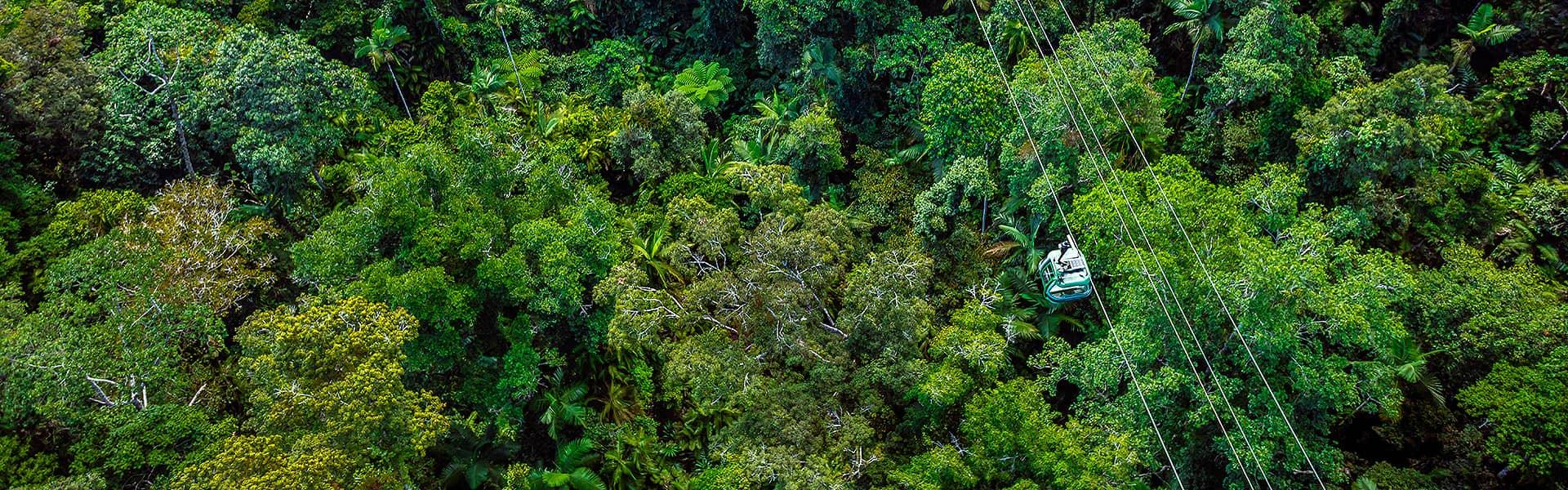 Cairns Reef, Rainforest, Kuranda, Harbour Cruise Accommodated Tours